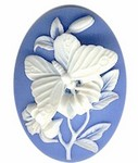 824R resin 40x30 Butterfly Cameo
