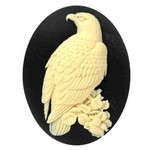 40x30mm Bald Eagle Cameo Black and Ivory Resin Bird Cameo 844x