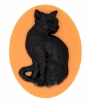 40x30mm  Black Cat on Orange Unset  Resin Cameo 895x