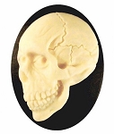 40x30mm Human Skull Day of the Dead Black Ivory Resin Bone Cameo 908x