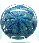 SOLD   Eickholt Studio Sand Dollar Glass Paperweight 1991 Blue Iridescent