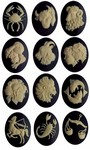 Complete Set of 40x30mm Zodiac Resin Cameos