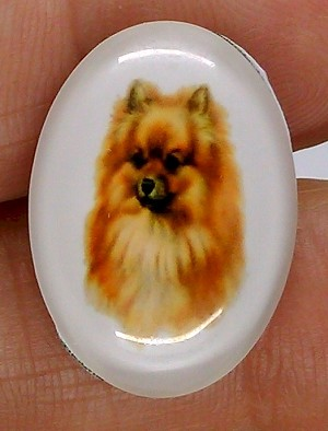 25x18mm Pomeranian Dog Glass Cabochon Cameo Jewelry Finding S2222